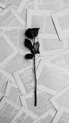 Wallpaper Rose Frases New Ideas Wallpaper Rose, Dark Wallpaper Iphone, Tumblr Wallpaper, Wallpaper Quotes, Black Flowers Wallpaper, Cool Black Wallpaper, Trendy Wallpaper, Black Walpaper, Wallpaper Backgrounds