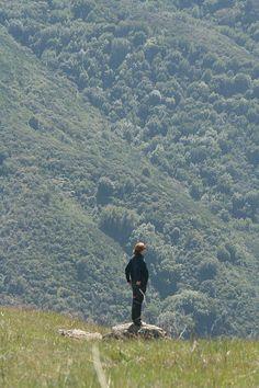 Hiking. Santa Cruz Mountains. Possibly Mt. Umunum.