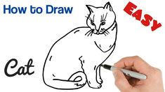 How to Draw a Cat Easy Art Tutorial for Beginners Easy Art, Simple Art, Easy Drawings For Beginners, Cat Drawing, Learn To Draw, Animal Drawings, Art Tutorials, Outline, Make It Yourself