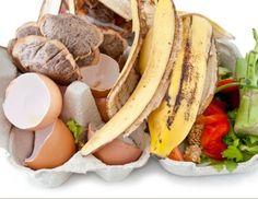 6 potravín, ktoré vám poslúžia ako lacné a účinné hnojivo | LepšieBývanie.sk