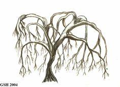 Willow tree art. My fav tree!