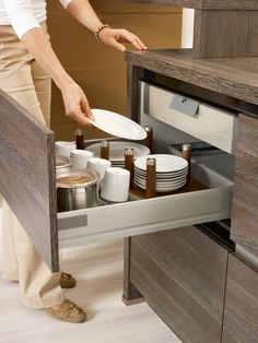base cabinet: drawer with inserted pull-out.  Bauformat special dividers to hold plates http://www.bauformatusa.com/portfolio-view/bali-cp-144/