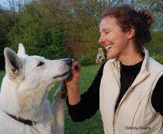 La Communication Intuitive® appliquée aux chiens et si nous parlions vraiment ensemble Communication, Westies, Husky, Labrador, Pets, Bindi, Boxers, Reiki, Evans
