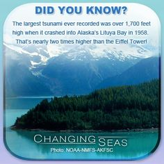 Did you know? The largest tsunami ever recorded was over 1,700 feet high when it crashed into Alaska's Lituya Bay in 1958. That's nearly two times higher than the Eiffel Tower! #TheMoreYouKnow