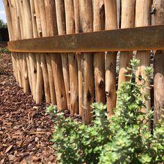 Latte pole screen with corten steel strapping Melbourne, Fence Screening, Corten Steel, Fences, Screens, Latte, Garden Design, Wood, Picket Fences