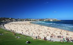 Babes at Bondi. We'd happily swap our office for a day at the beach!