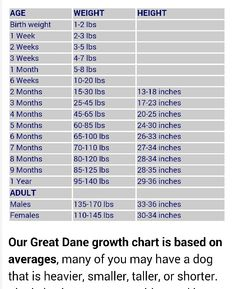 Great dane dog breed information pinterest growth charts chart