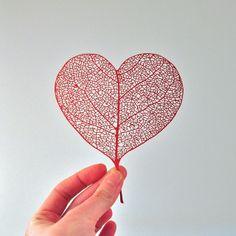 Candyspotting's beautiful heart leaf papercut