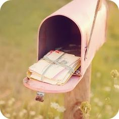 i think i need to paint our mailbox pink when my husband isnt looking
