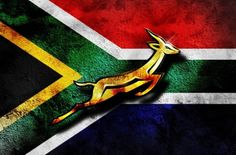 This photo represents South Africa's Rugby team and also other sports played there this photo shows their logo which is a deer. Rugby is The most popular sport in South Africa, and many people enjoy playing, there team is also very good South Africa Rugby Team, South African Rugby, Rugby Wallpaper, Screen Wallpaper, Go Bokke, Rugby Championship, South Afrika, Rugby World Cup, Country