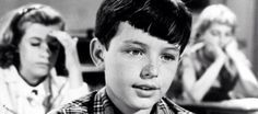 jerry mathers my three sons - Yahoo Image Search Results