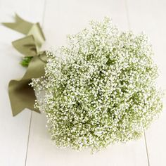 Baby's Breath For A Rustic Wedding - Rustic Wedding Chic  I keep looking at bouquets and this simple bouquet is what I love.  It just fits!  #DBBridalStyle Maybe bridesmaid flowers?