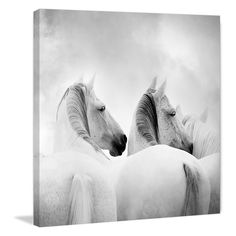 Marmont Hill White Horses Canvas Painting Print - Exquisitely detailed and featuring ethereal shades of white, the Marmont Hill White Horses Canvas Painting Print radiates elegance and grace. Offered...