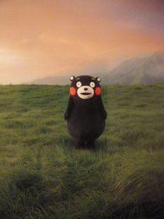 阿蘇の草原で微笑むくまモン。