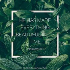 """""""He has made everything beautiful in its time."""" -Ecclesiastes 3:11 #bibleverse #truth #moms #motherhood #thebettermom"""