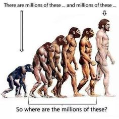 Evolution (#SoCalled) #SeeComments