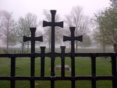Fricourt German Cemetery emerging out of a morning mist.