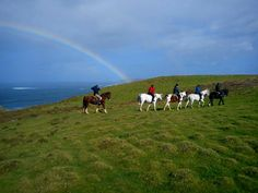 The magical shores of Dunfanaghy, Donegal, Ireland. Attraction, Ireland Holiday, Rainbow Galaxy, Donegal, Horseback Riding, Stables, Dream Vacations, Service Design, Seaside