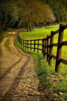Country dirt road with post fence Country Fences, Country Farm, Country Life, Country Roads, Summer Landscape, Back Road, Take Me Home, Farm Life, Pathways