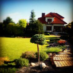 Ogród o poranku