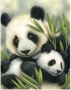 Diamond mosaic needlework cross stitch Embroidery with diamonds Painting by numbers Wall decor art Pictures Cute Baby Panda Y520