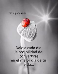 Positive quotes about strength, and motivational Positive Phrases, Motivational Phrases, Positive Thoughts, Positive Quotes, Spanish Inspirational Quotes, Spanish Quotes, Best Quotes, Life Quotes, Famous Quotes