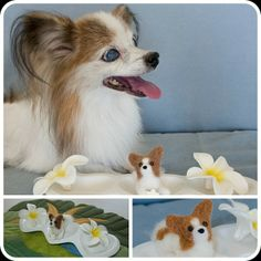 .@momos_gallery | I made a mini papillon figure , Needle Felting | Webstagram