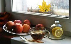 Ceaiul este o imbratisare calda intr-o zi de Toamna...  https://livadacuceai.ro/rooibos-forest-fruits-q-133-318