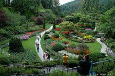 Butchart Gardens has perfectly sculpted hillside gardens.