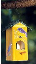 mangiatoia per uccellini