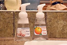 Foaming Handsoap for Only TWENTY-ONE Cents! : Simple, Healthful and Inexpensive to Make at Home!!!
