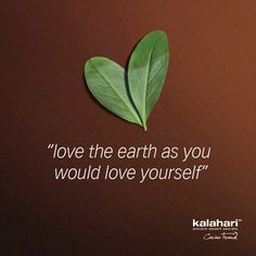 Happy Earth Day! #kalaharilifestyle #earthday #earth Love The Earth, My Life Style, Happy Earth, Earth Day, Plant Leaves, Deserts, Love You, Lifestyle, Quotes