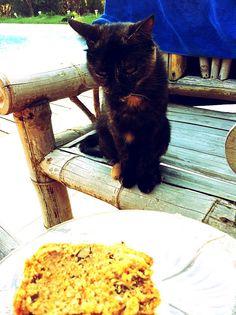 blossom's Pie: Comme au Starbucks #1: le carrot cake