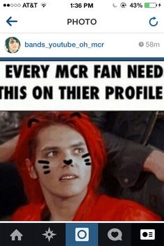 sorry man but i'll do whatever these people want if it has Gerard Way on it with kitty whiskers