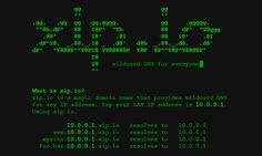 wildcard DNS for everyone Best Hacking Tools, Learn Hacking, Security Tools, Computer Security, Home Security Systems, Computer Setup, Computer Technology, Raspberry Pi Computer, Tecnologia
