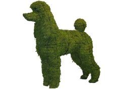 17 Mossed Topiary Poodle www.stores.ebay.com/jackedwardscollection