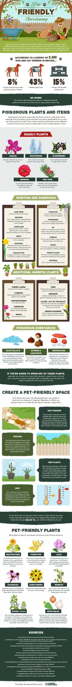 Planning Your Spring Garden Make Sure Its Dog Friendly Infographic