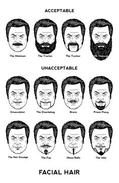 laughingsquid:  Nick Offerman's Guide to Facial Hair, An Illustration by Mike Mitchell