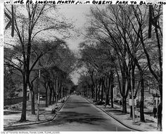 What University Avenue used to look like in Toronto Tree Line, Back In Time, Wikimedia Commons, Historical Photos, Toronto, Past, To Go, Sidewalk