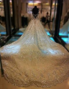 oh my! now that is a wedding dress. imagine walking down the aisle with a train like that. you would definitely need a reception dress.