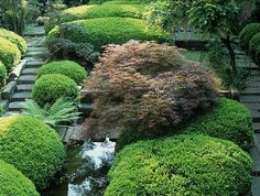 Daniel Ost, Belgium , Florist, garden designer