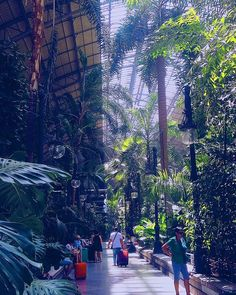 Tropical heat in Madrid 🌴🌿 #Spaindayspft #Madrid #travel #trip #vsco #pftblog #travelerinmadrid #traveler #calor #travelgram #tropical #tropic #jungle #trains #station