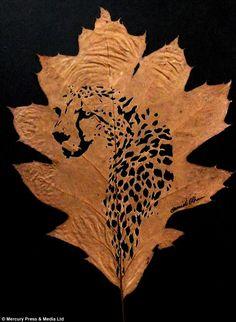 Resultat d'imatges de omid asadi leaf art