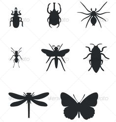 Realistic Graphic DOWNLOAD (.ai, .psd) :: http://jquery-css.de/pinterest-itmid-1000061982i.html ... Insect black silhouttes set 01 ...  black, insect, set, silhoueete  ... Realistic Photo Graphic Print Obejct Business Web Elements Illustration Design Templates ... DOWNLOAD :: http://jquery-css.de/pinterest-itmid-1000061982i.html