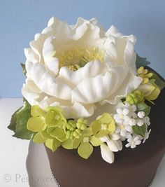 seriously! this is my new obsession. I just have to learn how to make such beautiful gum paste flowers!!!