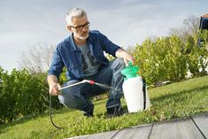 Outdoor Power Equipment, Gardening, Chemistry, Lawn And Garden, Garden Tools, Horticulture