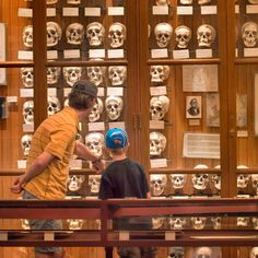 Mutter Museum in Philadelphia's Rittenhouse Square neighborhood offers a vast collection of medical and anatomical oddities.