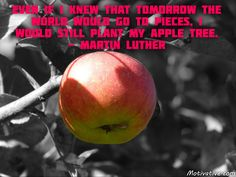 Even if I knew that tomorrow the world would go to pieces, I would still plant my apple tree. - Martin Luther -   Tomorrow is full of uncertainty & what seems to happen may not happen at all. Do what you can do today to plan for a better tomorrow. Be forward-looking with hope & optimism. Face adversity with positivity.