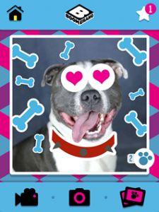 gratis app Boomerang Pet Photo Booth iOS GooglePlay