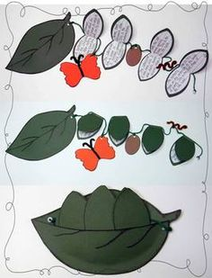 Butterfly Life Cycle on a String: Students write about each stage of a butterfly's life cycle $